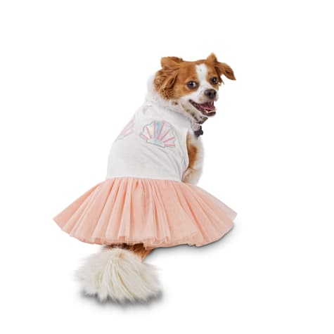 Bond & Co. Shell We Prance Mermaid Dog Dress