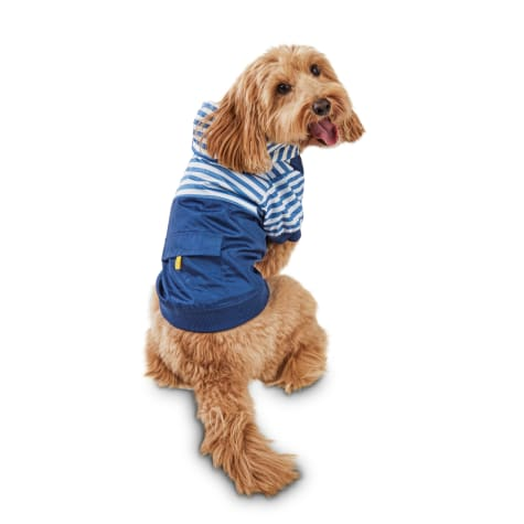 Bond & Co. New Captain On The Colorblock Nautical Dog Nylon Windbreaker