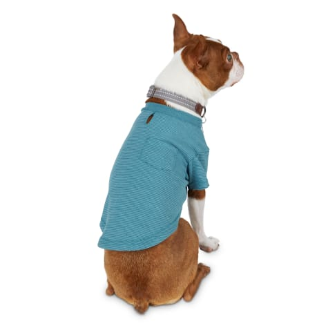 Reddy Teal Striped Jersey Crewneck Dog T-Shirt