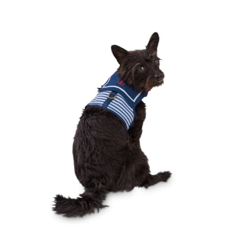 Bond & Co. Off The Charts Nautical Dog Harness