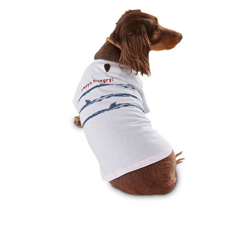 Bond & Co. Always Hungry Shark Dog T-Shirt