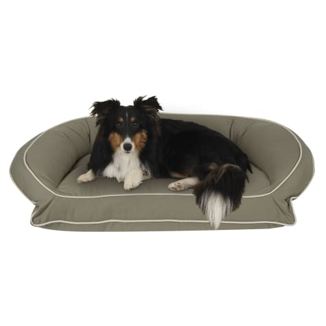 Carolina Pet Company Classic Canvas Memory Foam Bolster Dog Bed