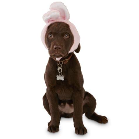 Bond & Co. Pink Bunny Bonnet Dog Hat