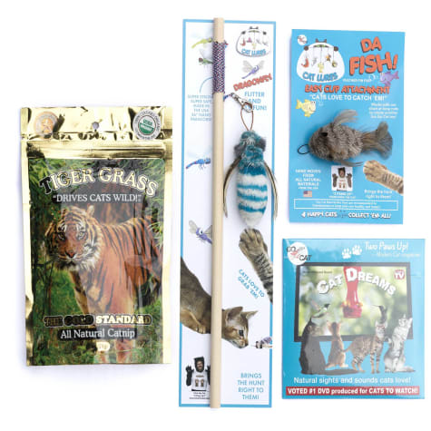 Go Cat Chris the Cat Dragonfly Multi Pack Toys