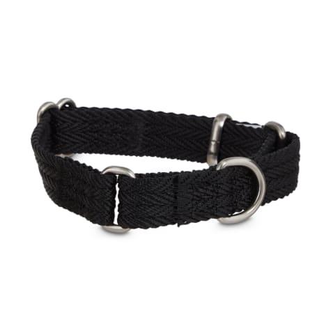 Good2Go Black Martingale Dog Collar