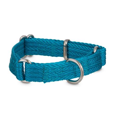 Good2Go Blue Martingale Dog Collar