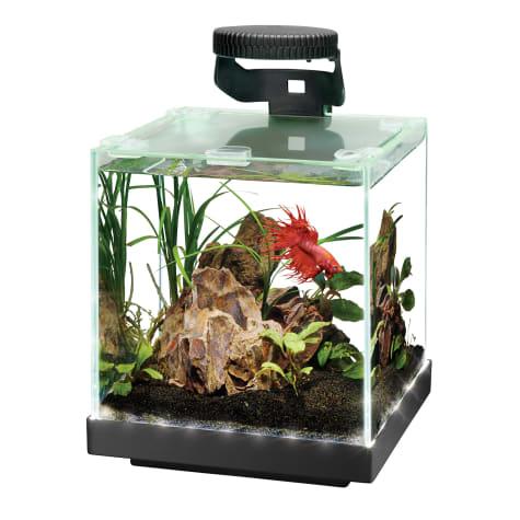 Aqueon Edgelit Cube Glass Top Aquarium