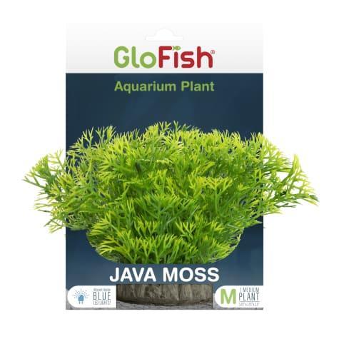 GloFish Java Moss Green Plant Fluorescent Under Blue LED Light Aquarium Decor