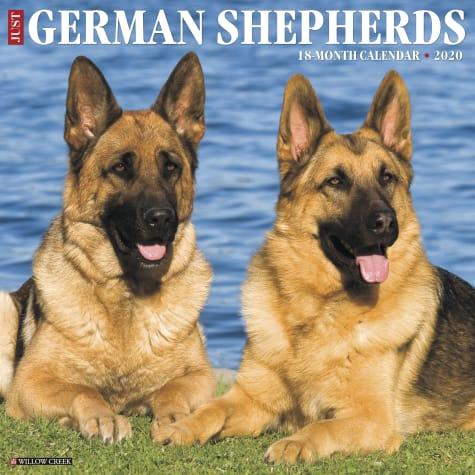 Willow Creek Press German Shepherds 2020 Wall Calendar