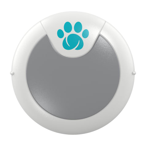 SureFlap Animo Activity Tracker and Behavior Monitor for Dogs