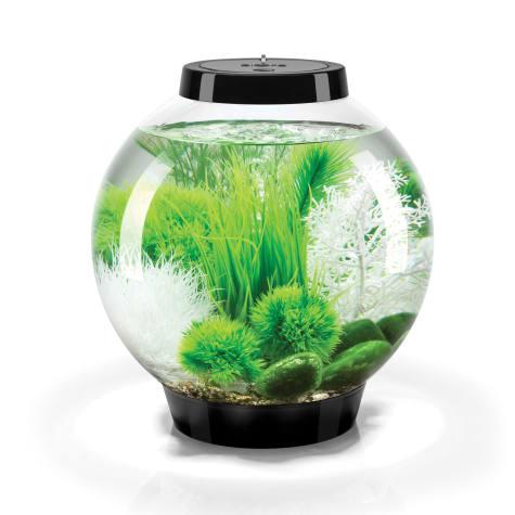 biOrb Classic Black Grass Field Aquarium Set With Led Light