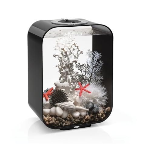 biOrb Life Black Aquarium With Micro Light