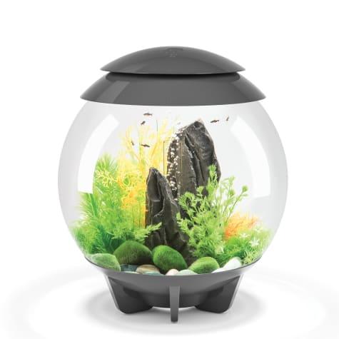 biOrb Halo Grey 8 Gallon Aquarium With Micro Light