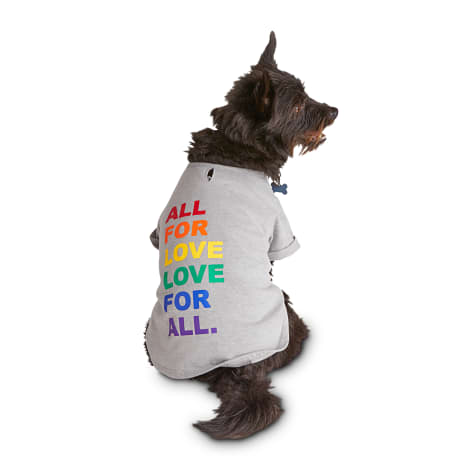 Bond & Co. Pride Rainbow Letters of Love Dog Graphic T-Shirt in Grey