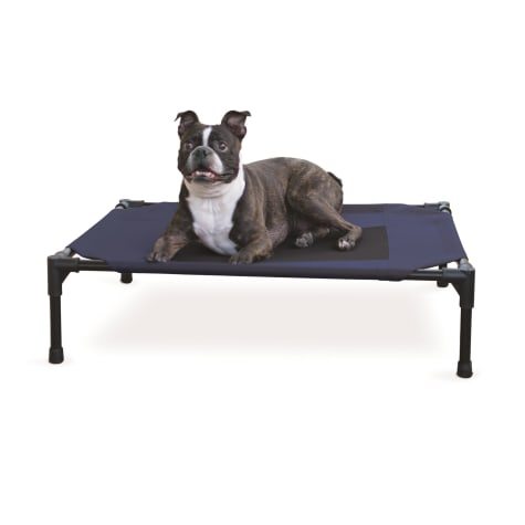 K&H Elevated Navy Blue Pet Bed