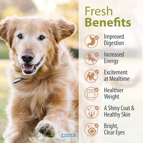 JustFoodForDogs Vet Support Diets Joint & Skin Frozen Dog Food