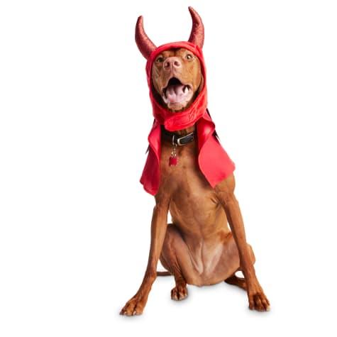 Bootique Devil Dog Dog Costume