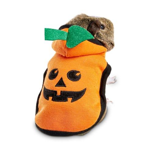 Bootique Pumpkin Bumpkin Small Animal Costume