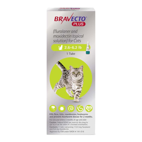 Bravecto Plus Topical Solution for Cats 2.6-6.2 lbs., Single 2 Month Dose