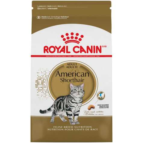 Royal Canin American Shorthair Breed Adult Dry Cat Food
