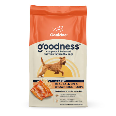 CANIDAE Salmon & Brown Rice Dry Dog Food