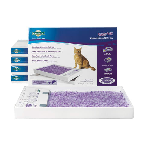PetSafe ScoopFree Lavender Disposable Crystal Cat Litter Tray