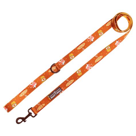 Beast & Buckle Pumpkin Spice Dog Leash