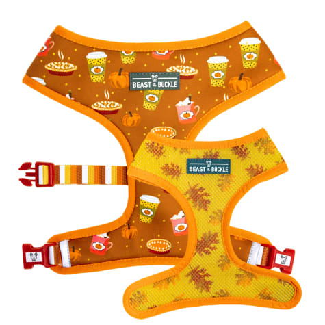 Beast & Buckle Pumpkin Spice Reversible Dog Harness