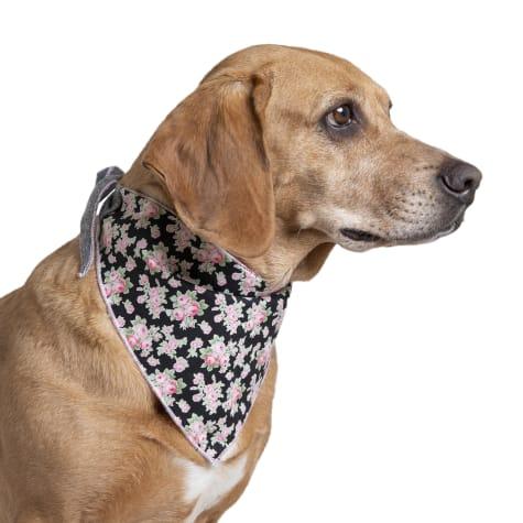 Long Dog Clothing Co. The Bloom Dog Bandana