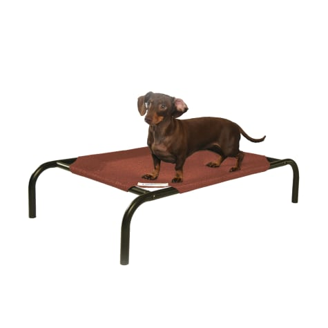Coolaroo Terracotta Elevated Dog Bed