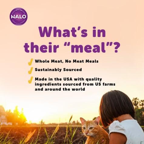 Halo Spot's Stew Grain Free Turkey Recipe Canned Cat Food