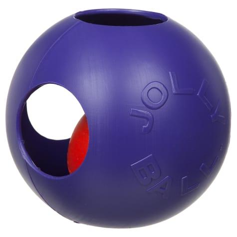 Jolly Pet Teaser Ball Dog Toy