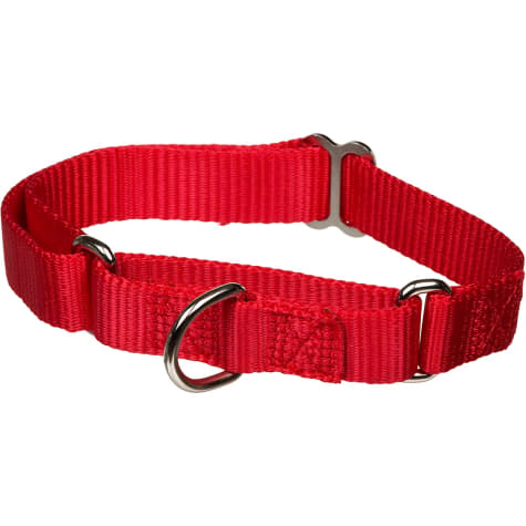 The Grrrip X-tra Control Collar in Red