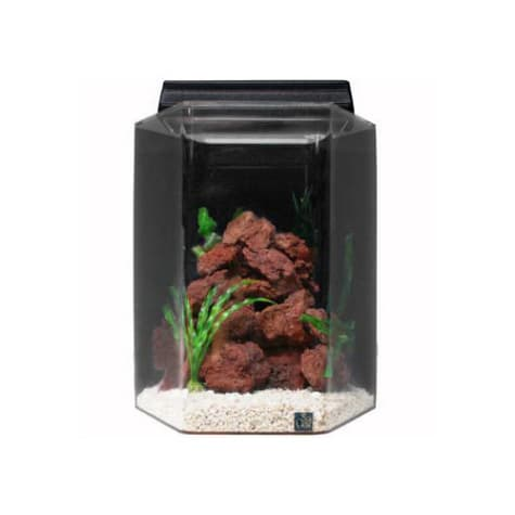 SeaClear Deluxe Hexagon 15 Gallon Aquarium Combos in Black