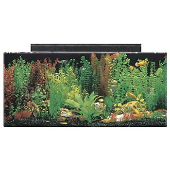 SeaClear Rectangular 40 Gallon Aquarium Combos in Black