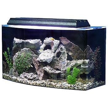 SeaClear Bowfront 36 Gallon Aquarium Combos in Black