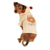 Bond & Co. Bearly Awake Dog Hoodie