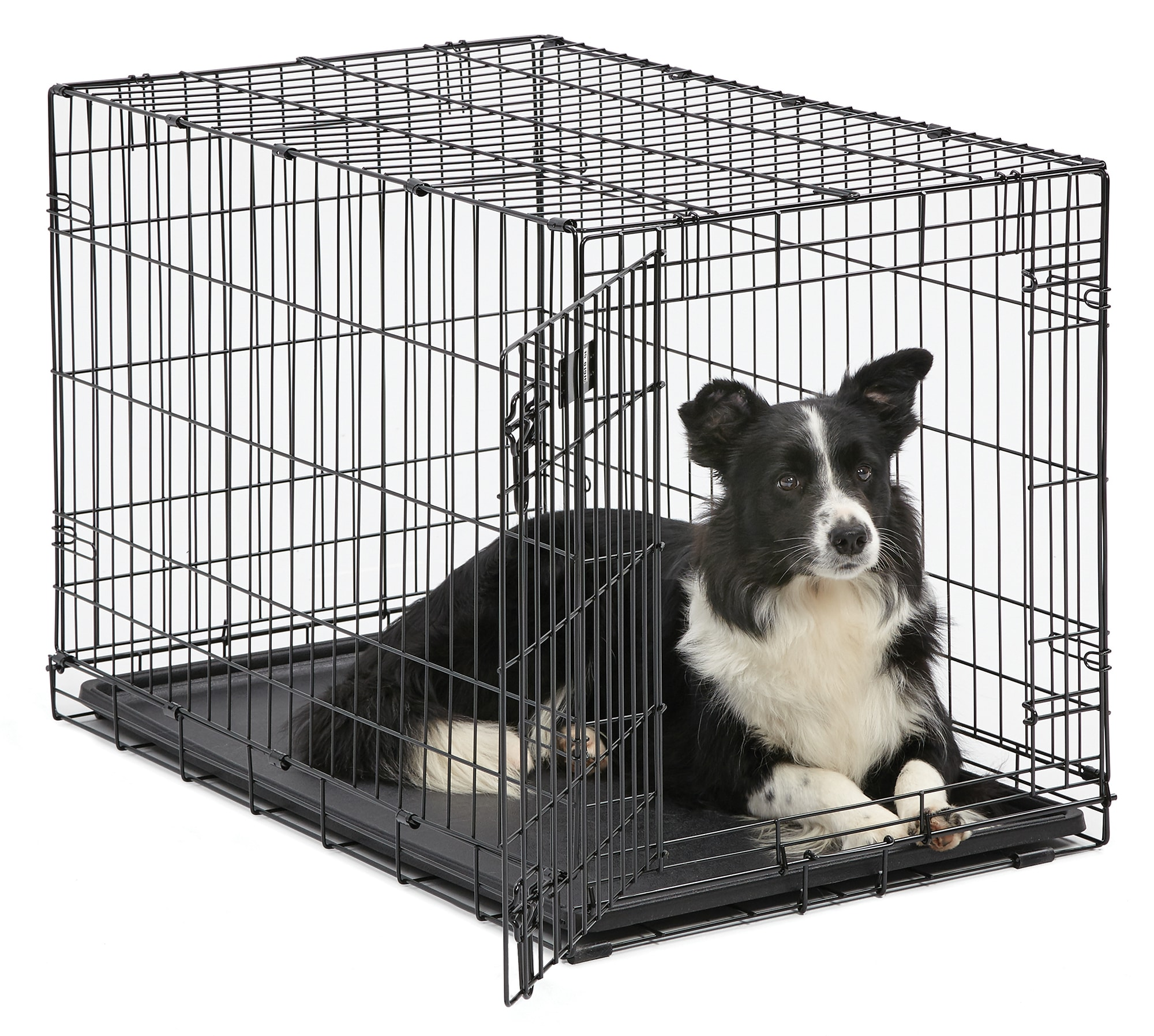 Midwest Icrate Single Door Folding Dog Crate 36 L X 23 W X 25 H Petco