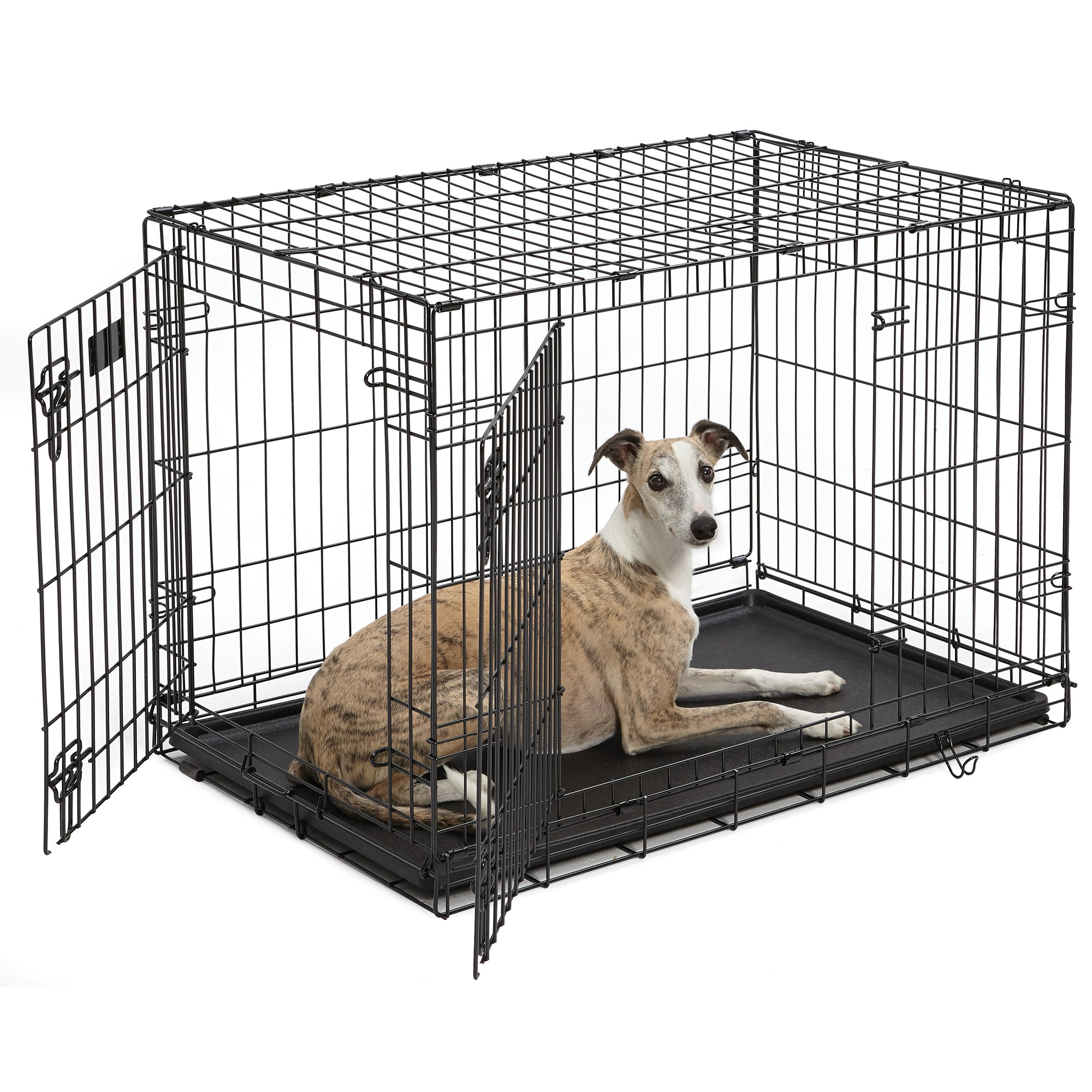 Midwest Icrate Double Door Folding Dog Crate 36 L X 23 W X 25 H Petco