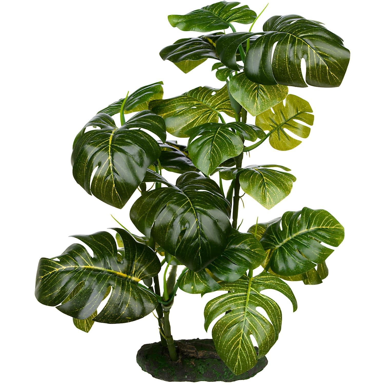 Imagitarium Stand Araceae Plant Terrarium Decor Large Petco