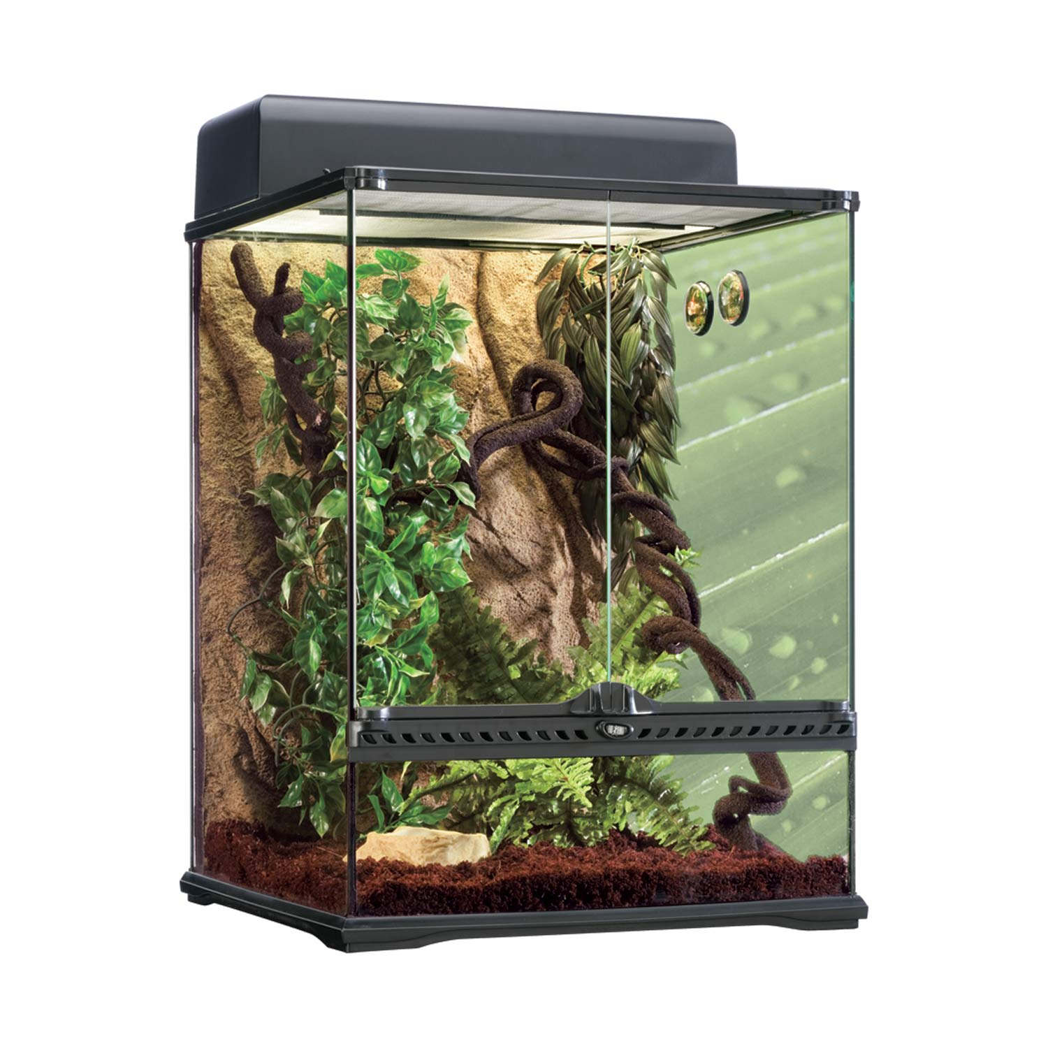 Exo Terra Rainforest Reptile Terrarium Kit Medium Petco