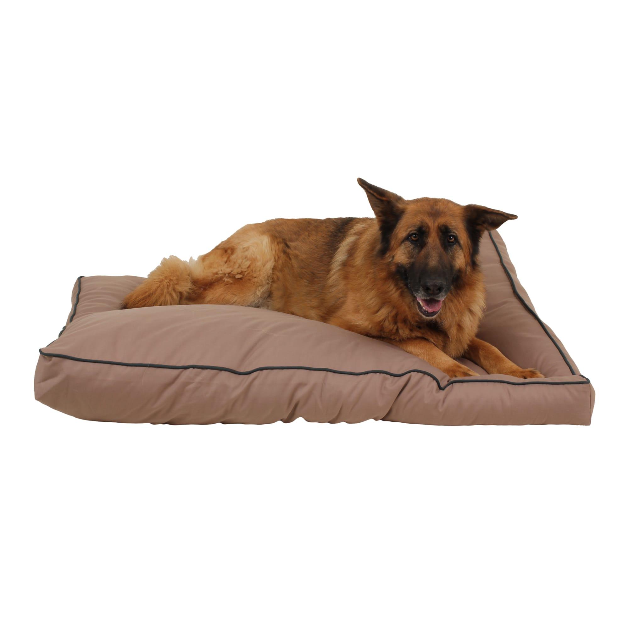 Carolina Pet Company Indoor Outdoor Jamison Tan Faux Gusset Dog Bed 42 L X 30 W Petco