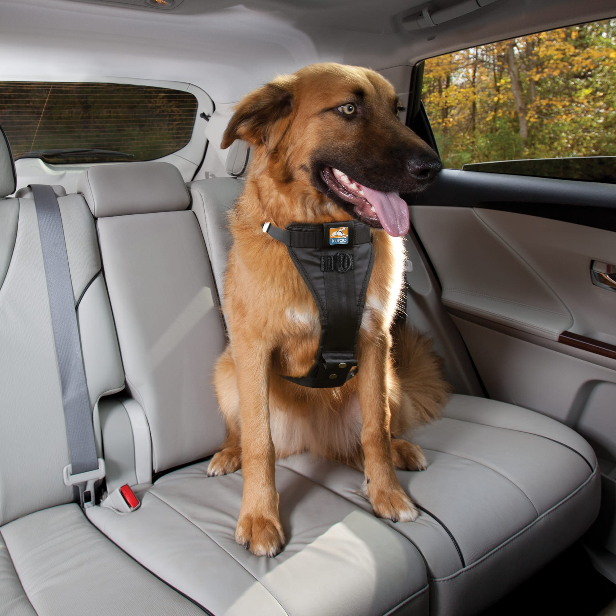 Tru Fit Crash Tested Dog Car Harness