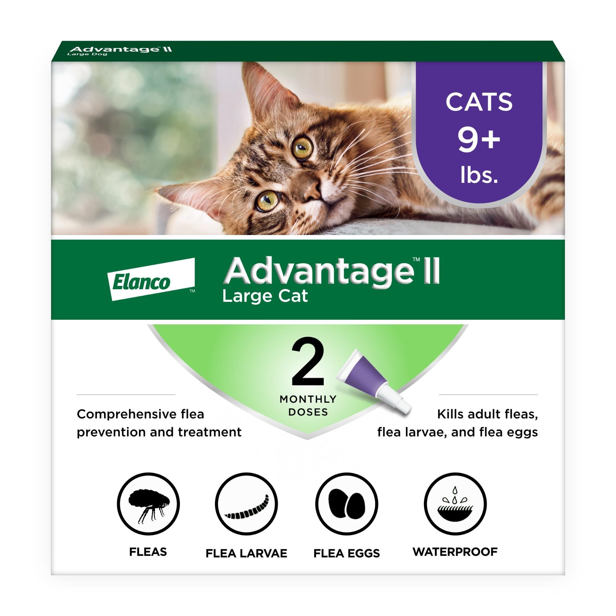Advantage Ii Cat Kitten Flea Drops Monthly Petco