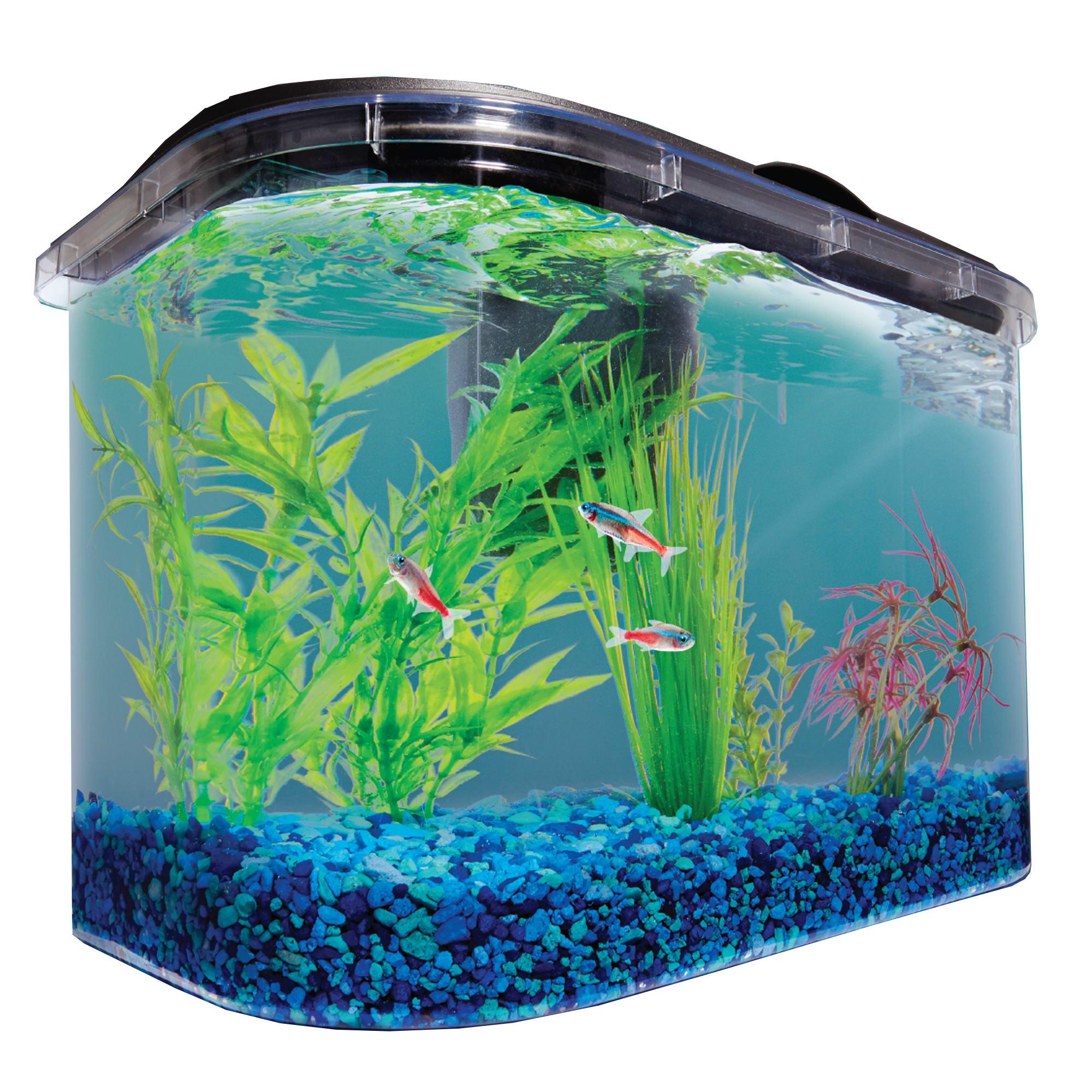 Imagitarium 5 2 Gallon Freshwater Aquarium Petco