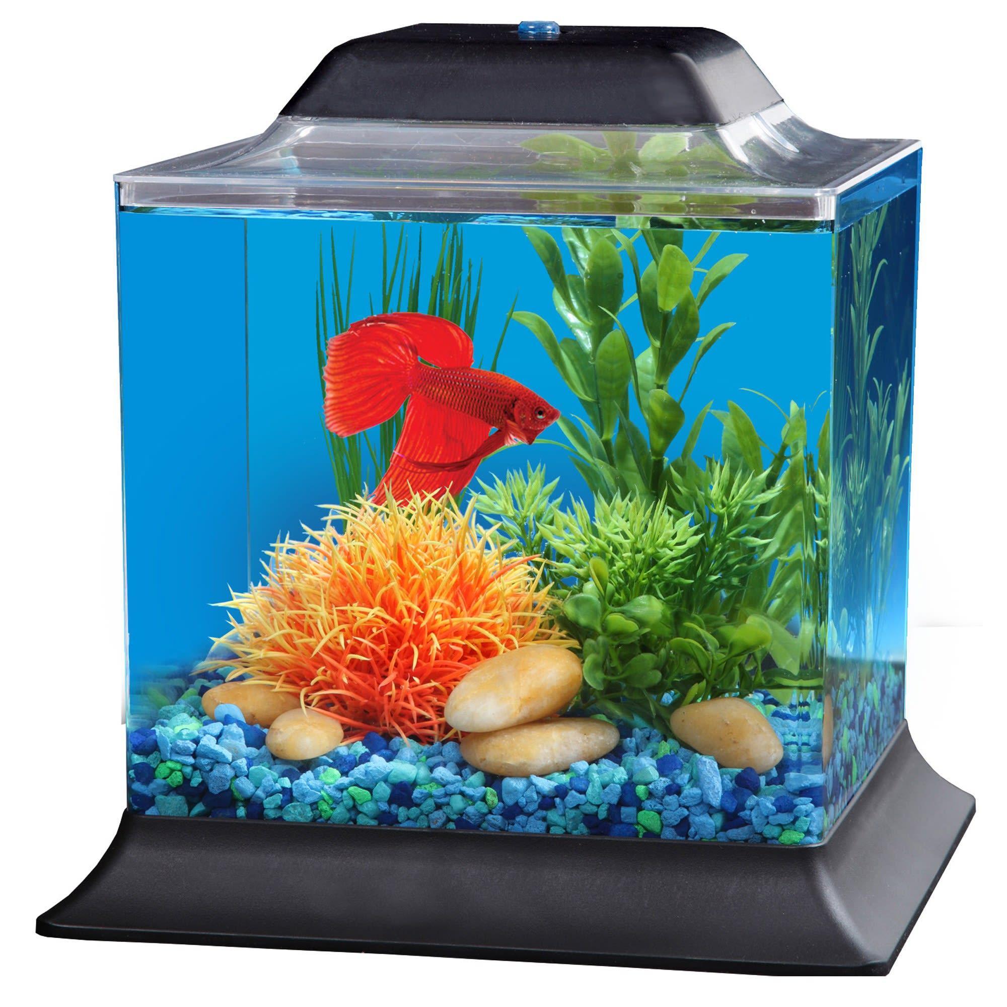 Imagitarium 1 4 Gallon Betta Aquarium Petco