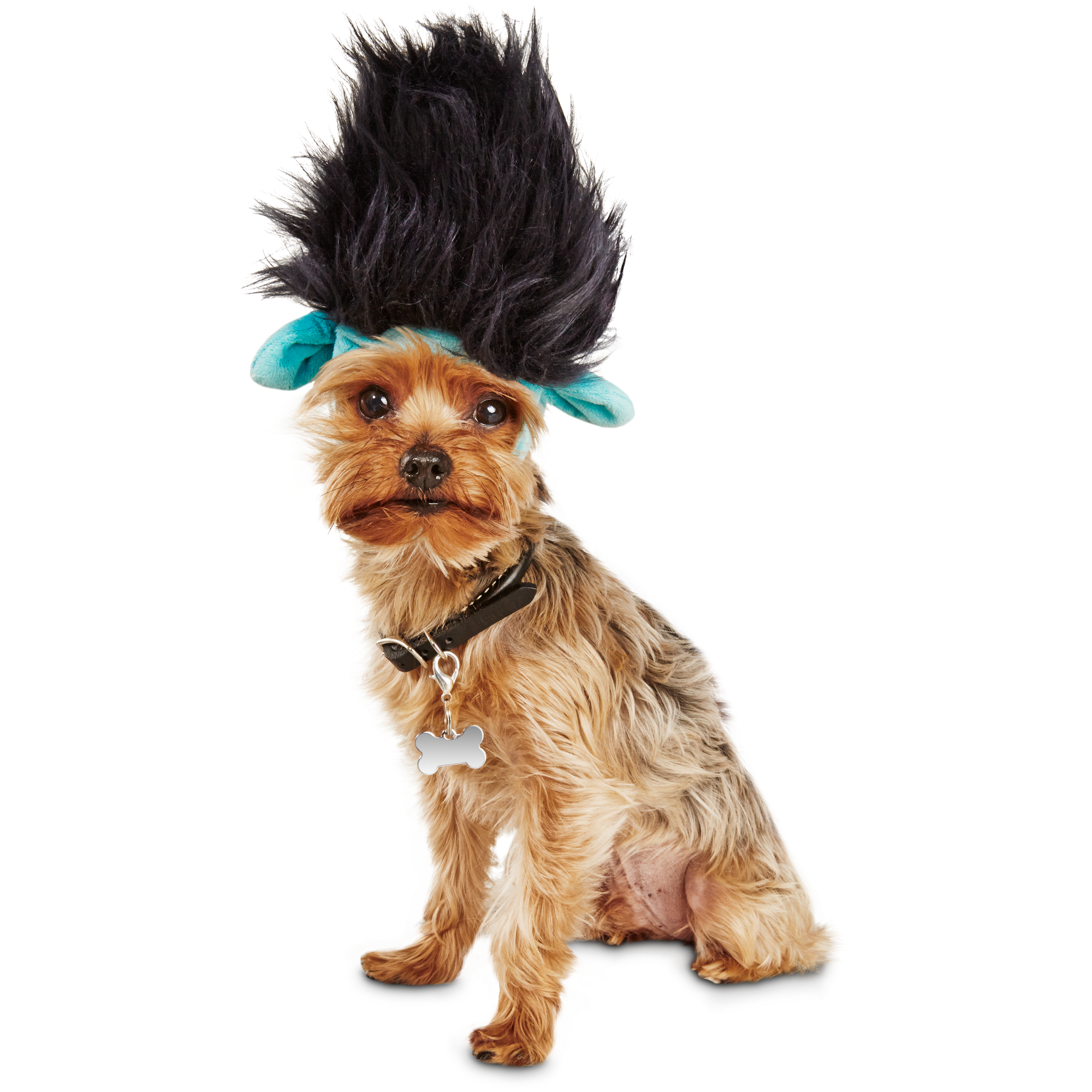Transform your pet into the lovable but overly cautious character Branch from the movie Trolls. Ultra-soft fabric-lined head wear with character details available in 2 sizes. Dreamworks Trolls copyright 2016 DreamWorks Animation LLC All Right Reserved.