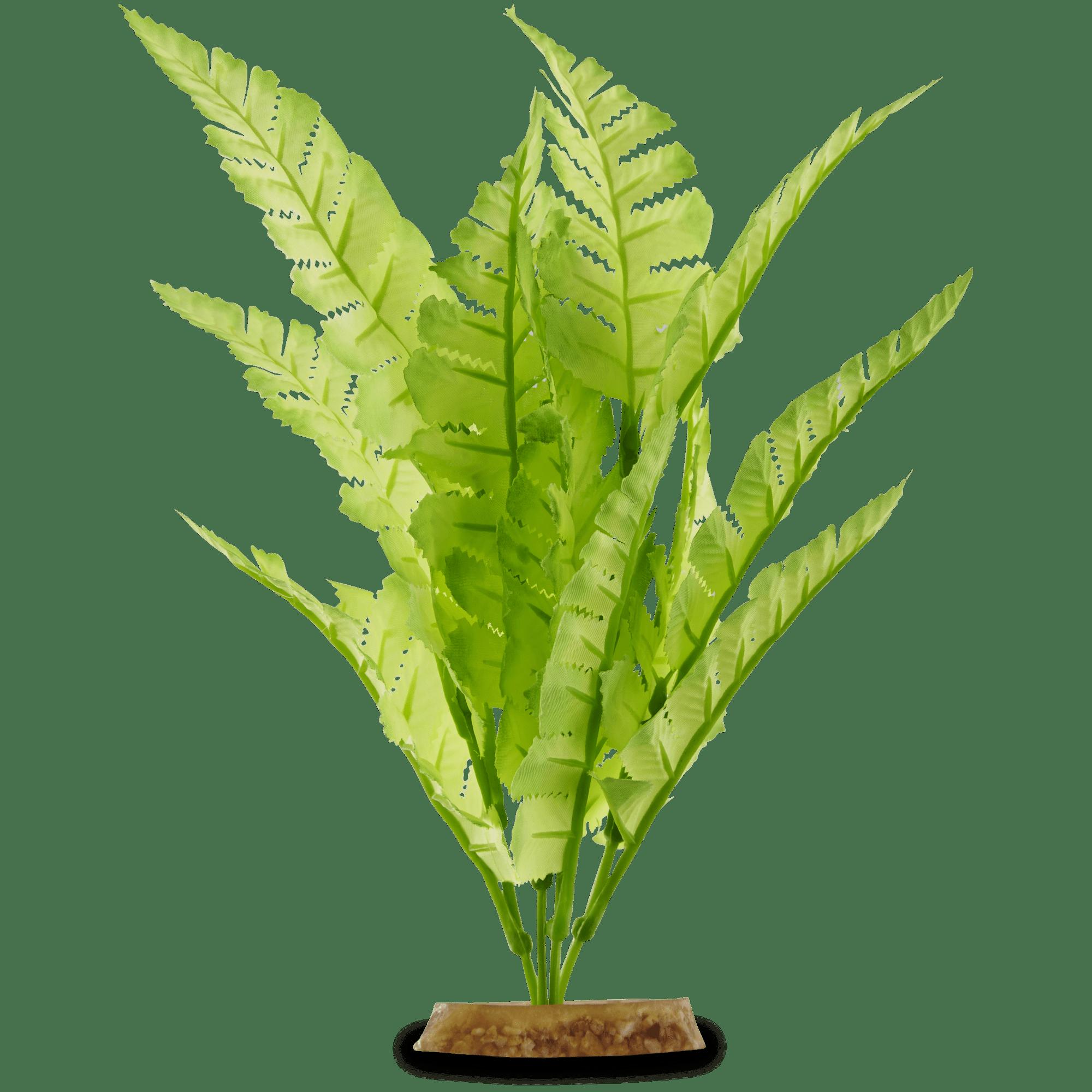 Imagitarium Bright Green Fern Silk Aquarium Plant Petco