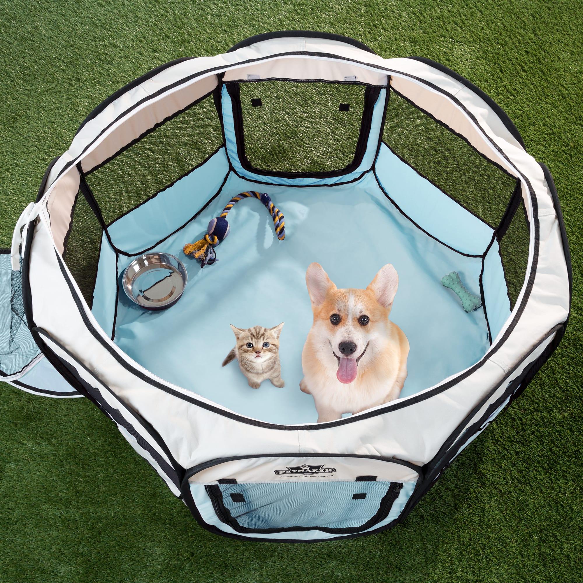 Petplay dog