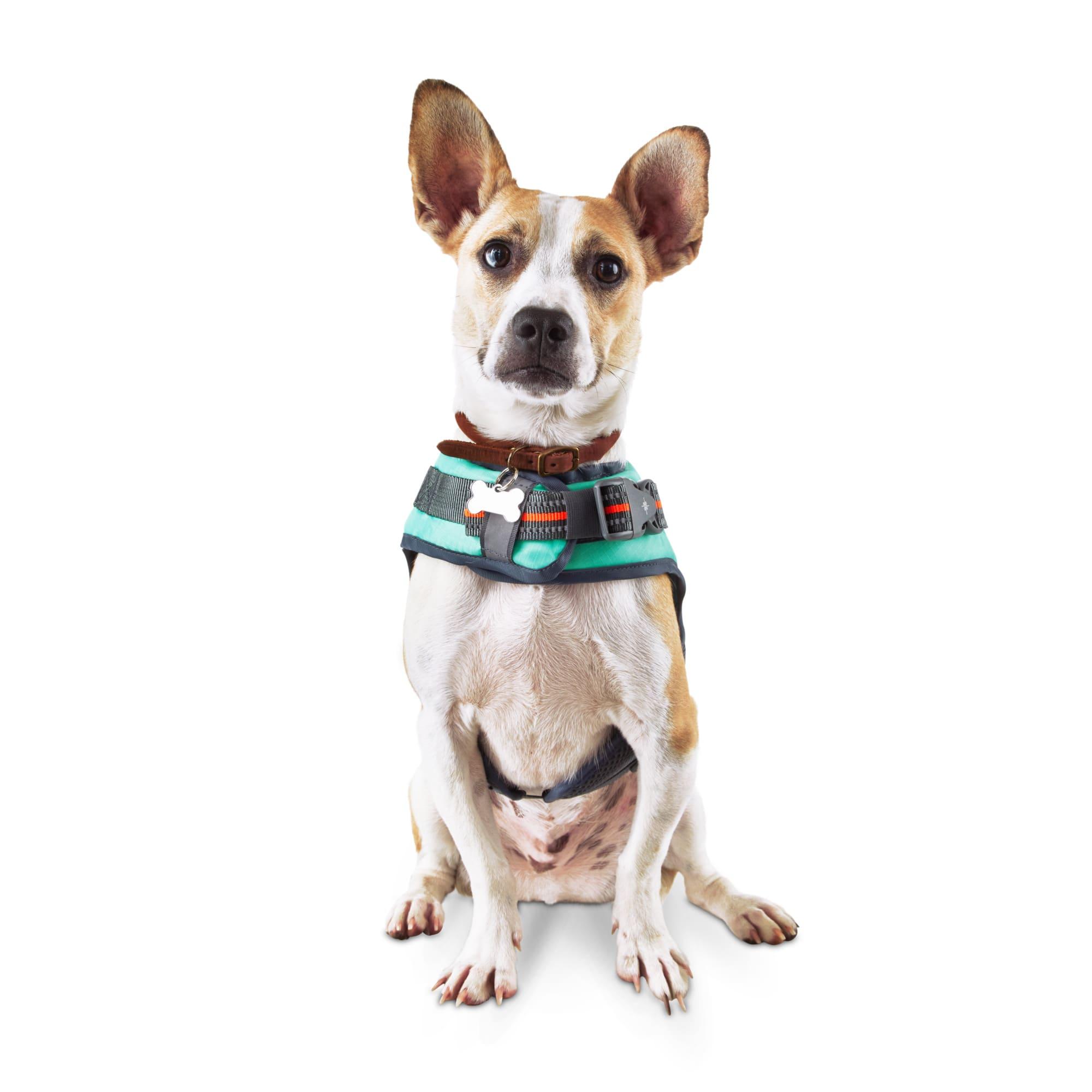 Good2go Dog Deluxe Floatation Vest X Small Petco